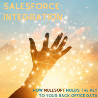 The ultimate guide to Salesforce integration using MuleSoft